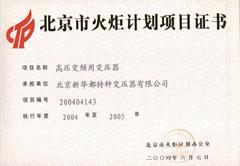 北京市火炬计划项目